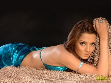 Celina Jaitley Spicy Pose Photo Shoot In Saree
