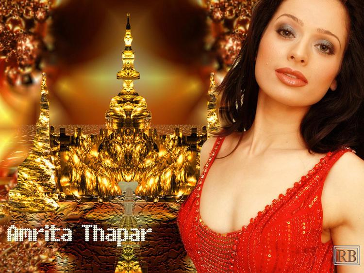 Amrita Thapar Wet Sexy Face Look Wallpaper