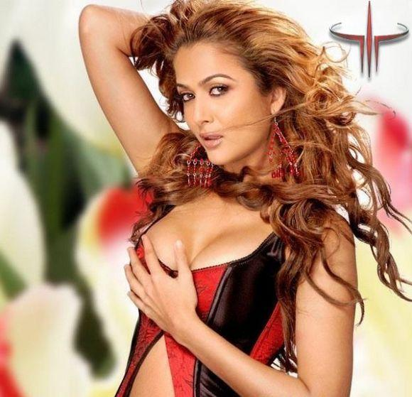 Amrita Arora Latest Sexiest Wallpaper
