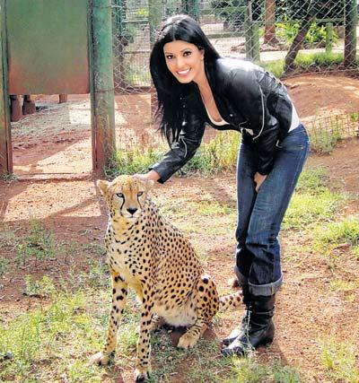 Koena Mitra Poses With Cheetah