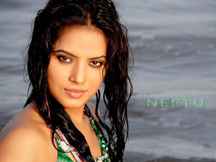 Neetu Chandra Wet Hair With Spicy Look Wallpaper