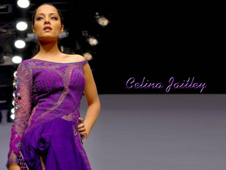 Celina Jaitley Hot Look Wallpaper In violet Color Dress