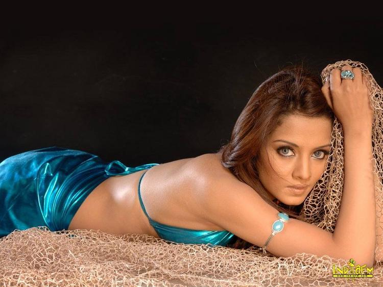 Celina Jaitley Sexy Saree Spicy Pic
