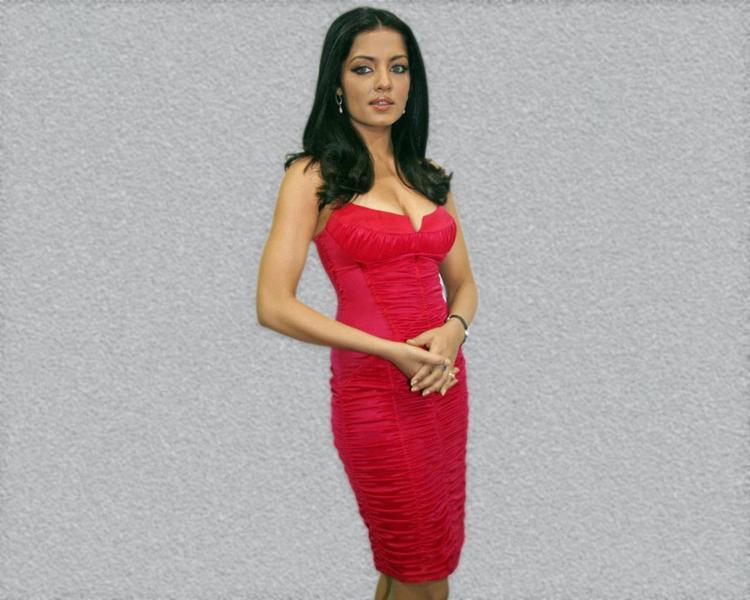 Celina Jaitley Stylist Photo In Red dress