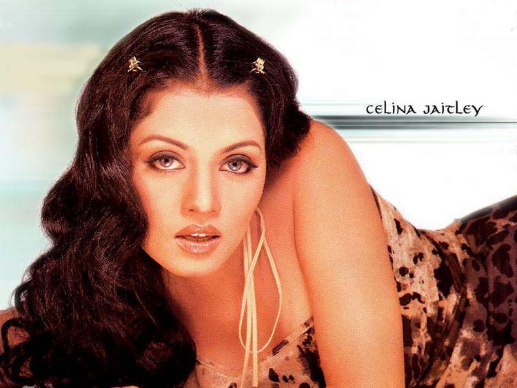 Celina Jaitley wet Look Wallpaper