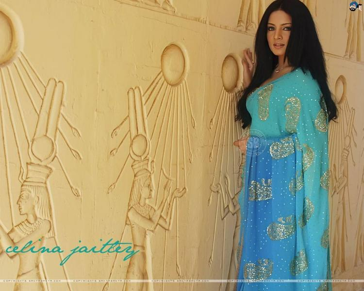 Celina Jaitley Nice Wallpaper In Saree