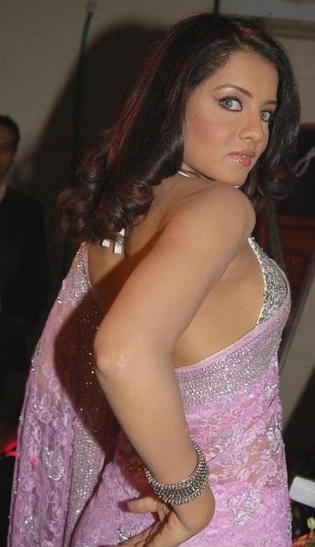 Celina Jaitley in Sexy Pink Saree