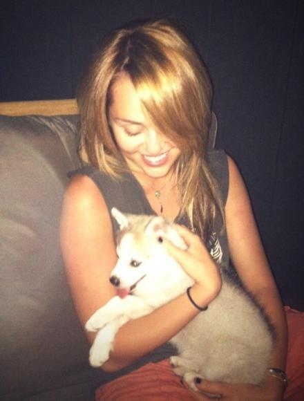 Miley Posing with Her Adorable Dog Floyd