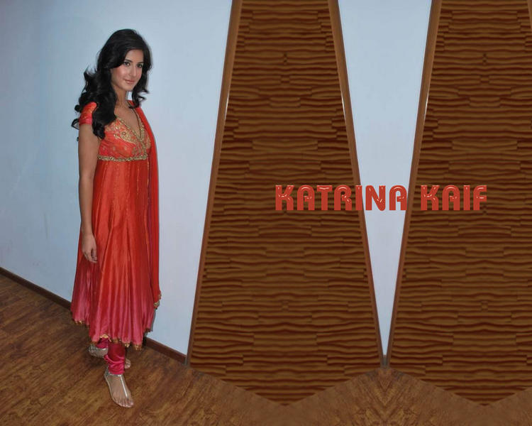 Charming Babe Katrina Kaif Wallpaper