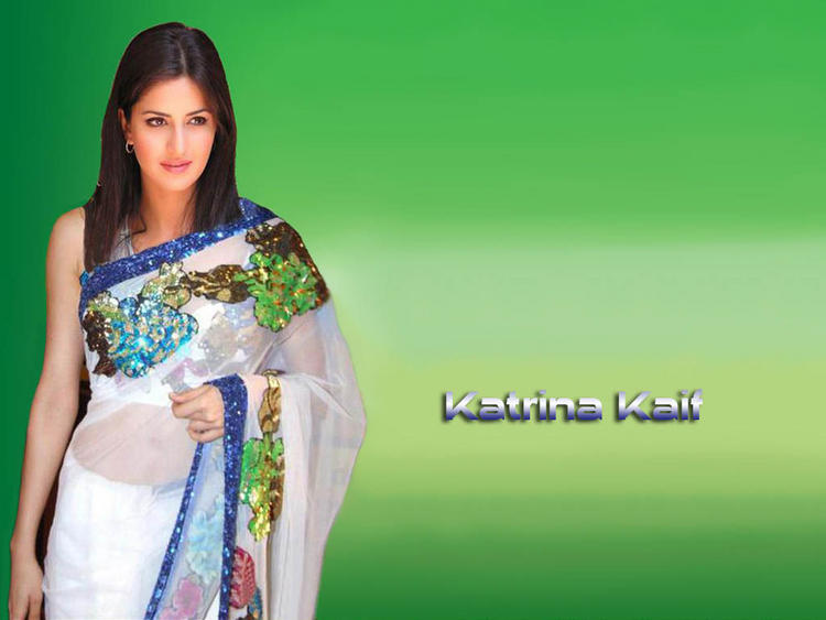 Katrina Kaif Stunning Pic In White Transparent Saree
