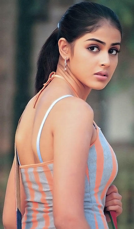 Genelia D'souza Cute Face Look Still