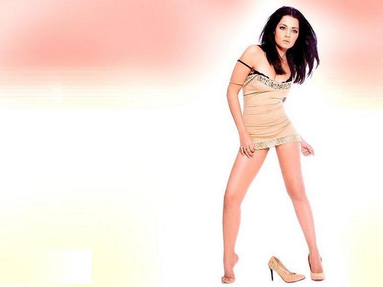 Sexiest Celina Jaitley Pic