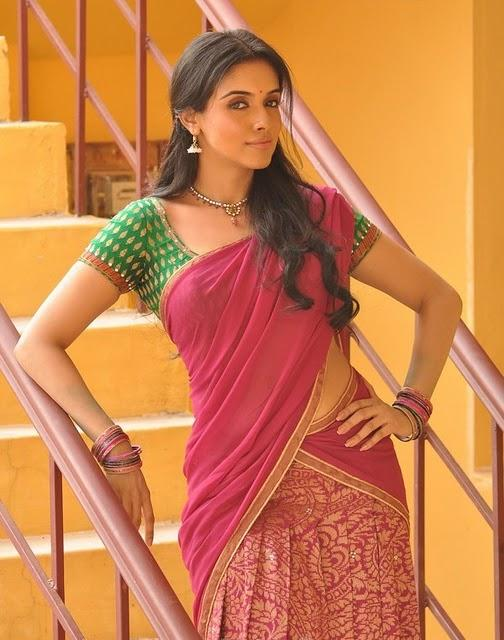 Asin Thottumkal Sexy Pose Photo Shoot In Half Saree