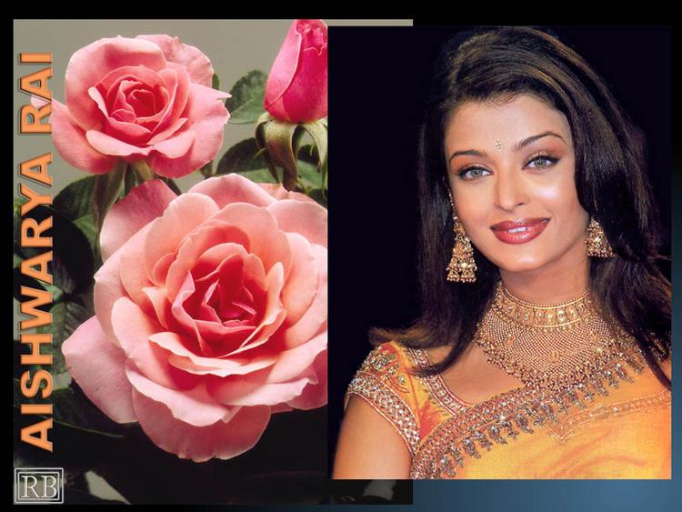 Aishwarya Rai Beauty Gorgeous Face Look Wallpaper