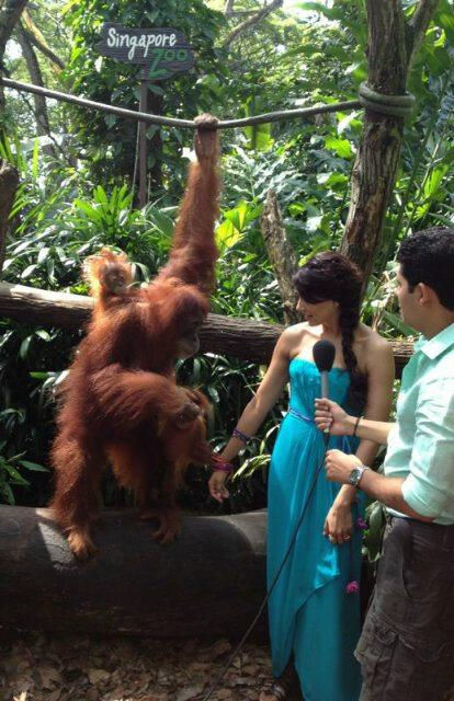 Bipasha Basu At Singapore Zoo