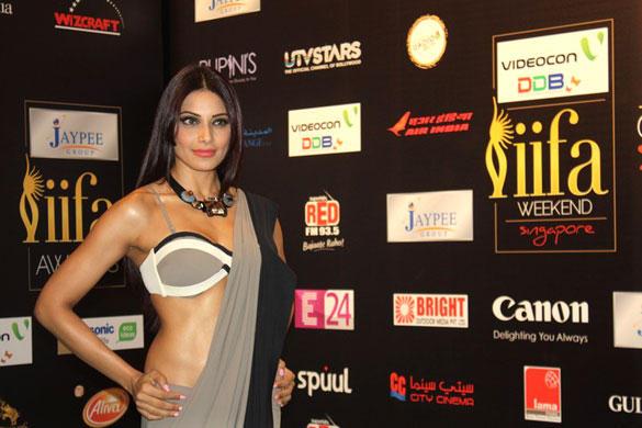 Bipasha Basu Looking Hot in Saree at IIFA 2012