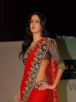 Bollywood Celebrity Katrina Kaif in Hot Saree Picture