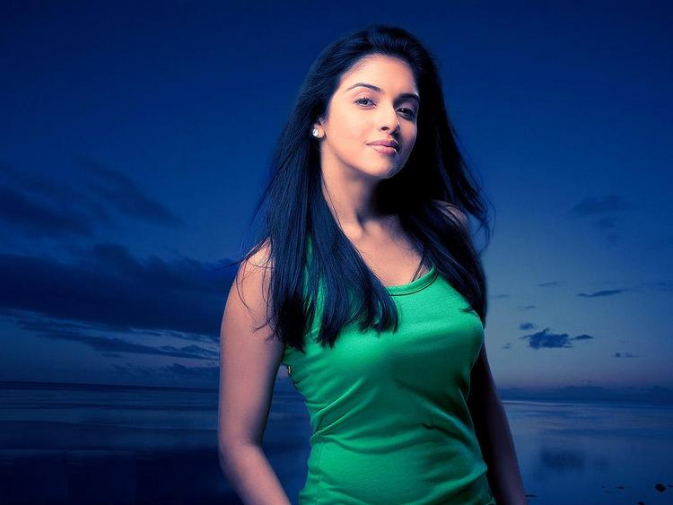 Asin Thottumkal Sexiest Hot Wallpaper