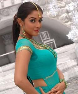 Sexy Tollywood Beauty Asin Thottumkal Pic
