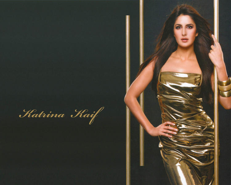 Katrina Kaif Sexy Dress Hot Picture