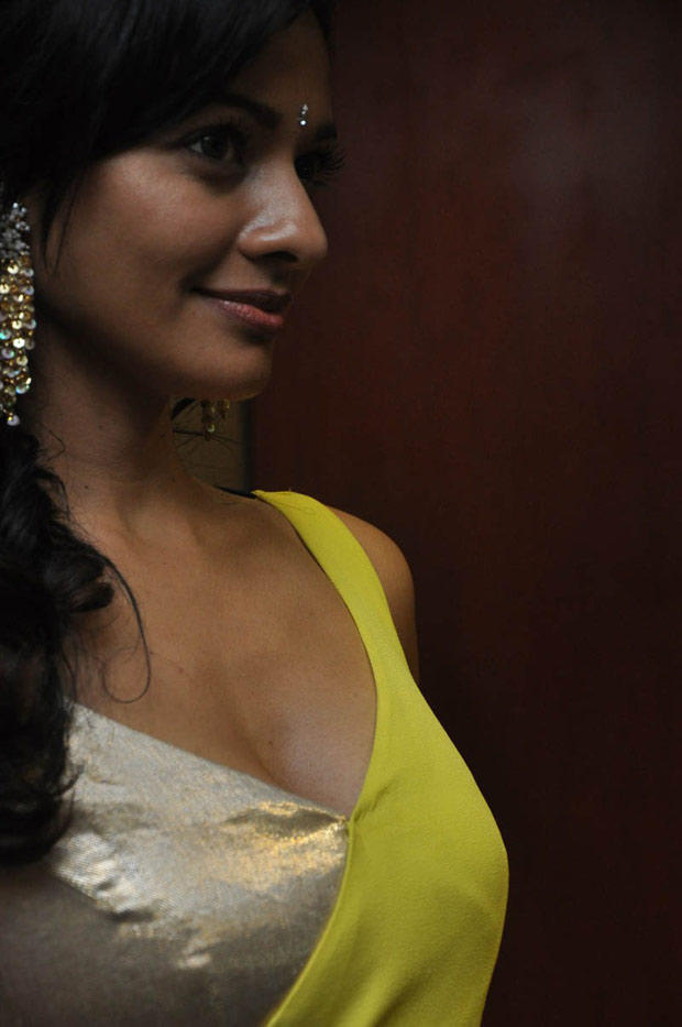 Pooja Kumar Side Face Look Nice Still