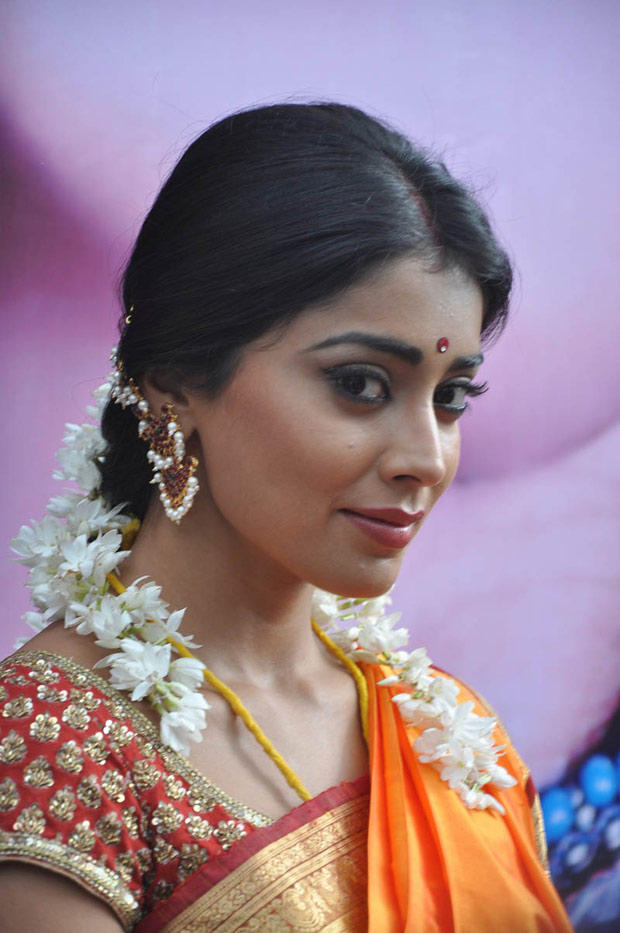 Shriya Saran Nice Look Still