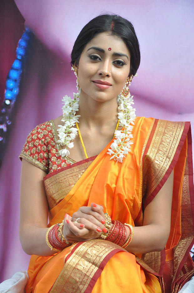 Shriya Saran In Saree Beautiful Look Still