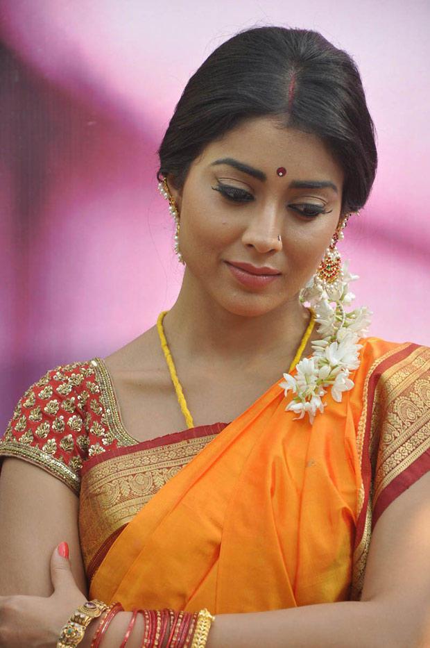 Shriya Saran In Saree Dazzling Look Still