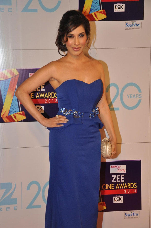 Sophie Choudry Wows In Blue Falguni And Shane Peacock Gown At Zee Cine Awards 2013