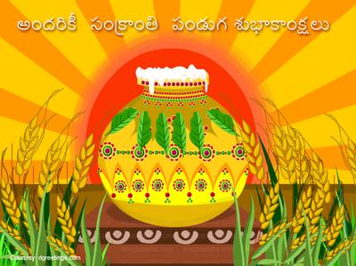 Nice Telugu Greeting Wallpaper For Makar Sankranti