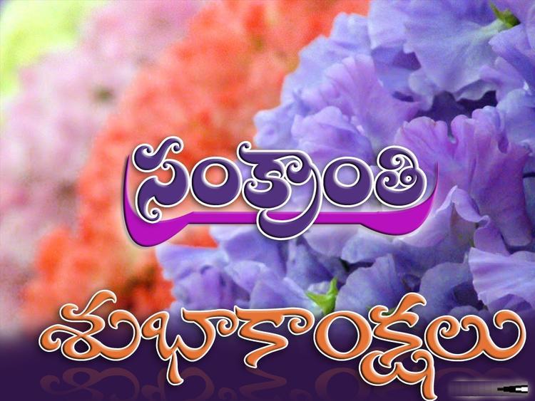 Pongal Greetings Wallpaper In Telugu
