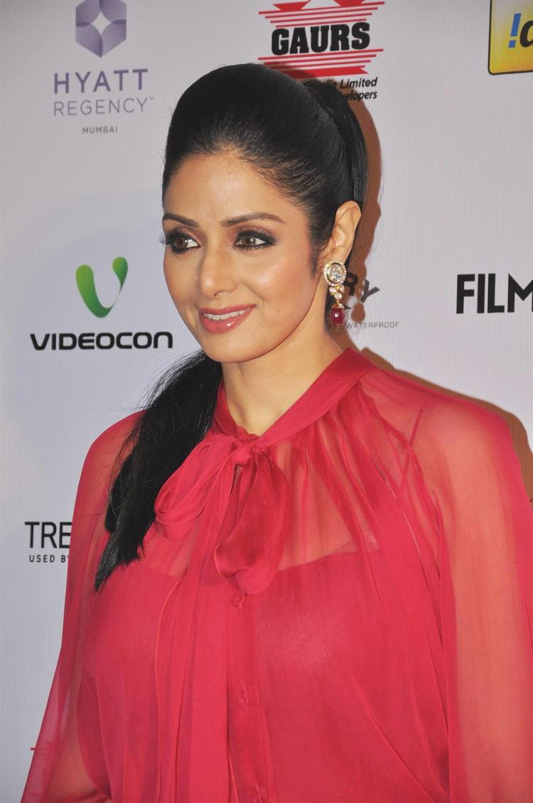 Sridevi Dazzling Look Photo In A Red Ensable At The 58th Filmfare Nomination Party
