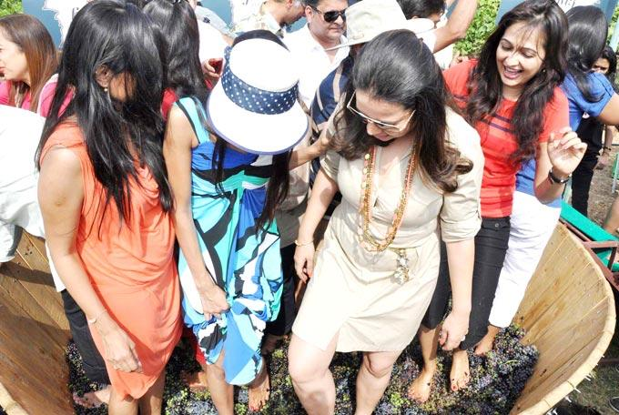 Some Socialistic Celebs Make Fun At Great Grover Zampa Stomp