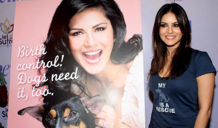 Sunny Leone Flashes A Smile At PETA Adopt Stray Dog Event