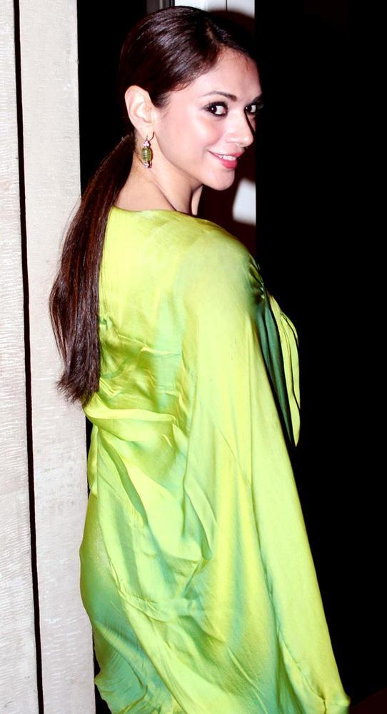 Aditi Rao Hydari Gorgeous Look At HT Most Stylish Awards 2013