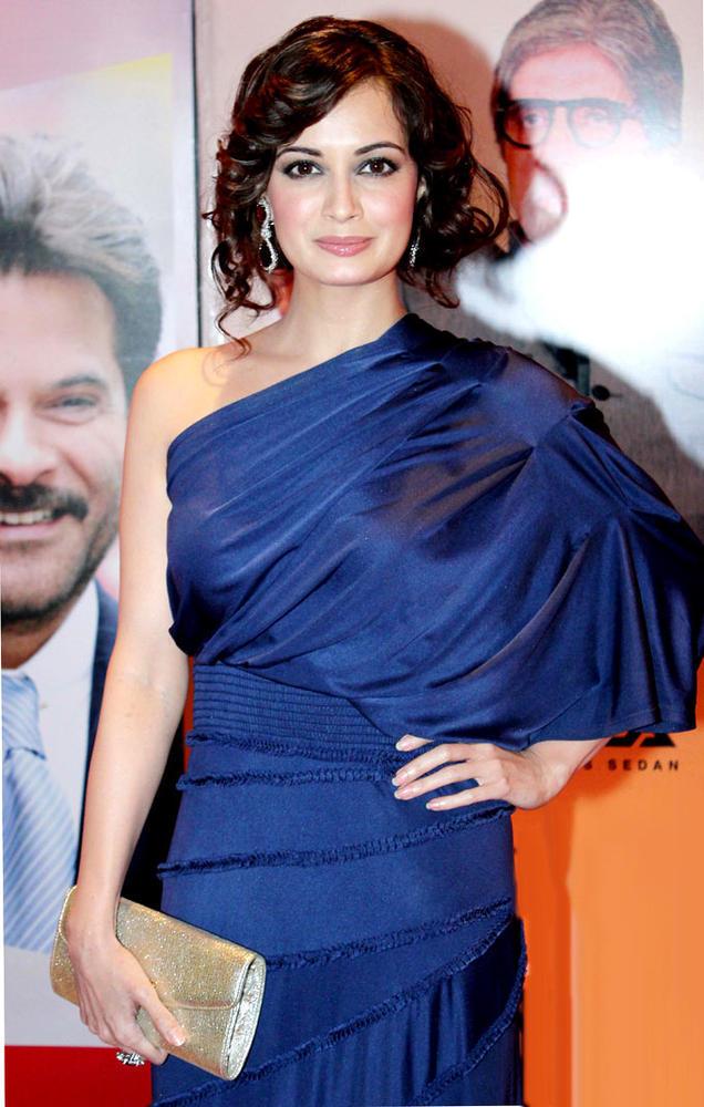 Dia Mirza Glamour Look At HT Most Stylish Awards 2013