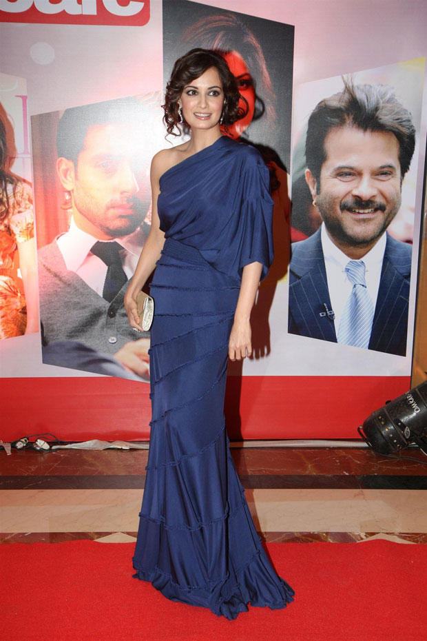 Dia Mirza Flashes A Smile At The Hindustan Times Style Award 2013