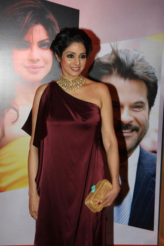 Sridevi Looked Glamorous At The Hindustan Times Style Award 2013