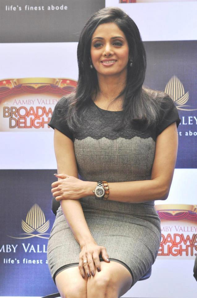 Sridevi Kapoor Cute Smiling At Aamby Valley Broadway Delights Launch