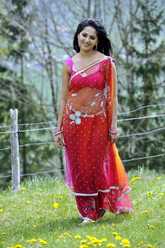 Anushka Shetty In Saree Sexy Look Still