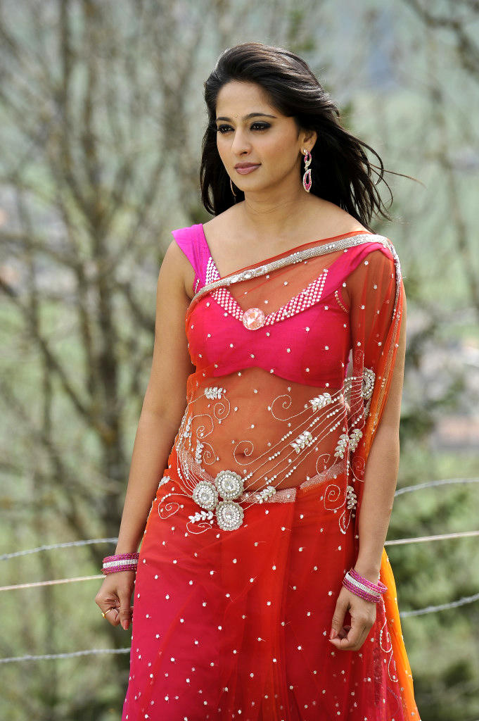 Anushka Shetty In Saree Trendy Look Still