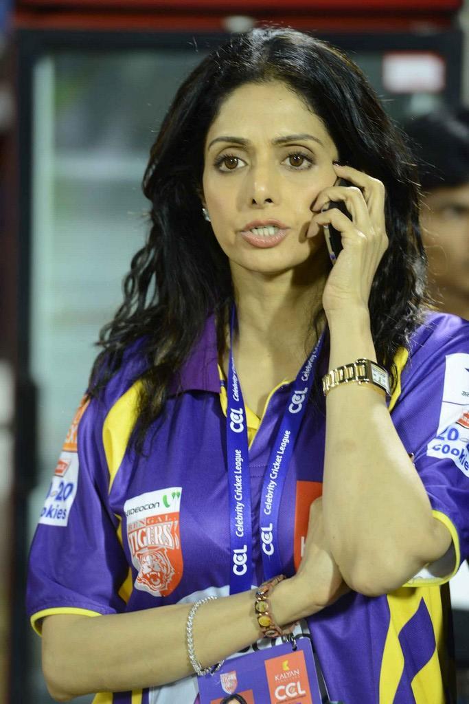 Sridevi Kapoor Talking With Cell At CCL 3 Telugu Warriors Vs Mumbai Heroes Match