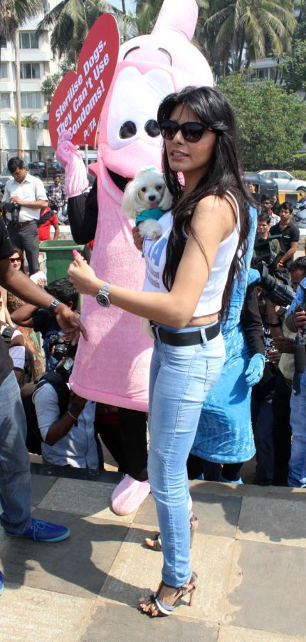 Sherlyn Chopra Atttend The Promotion Of PETA's Safe Sex For Animals Campaign