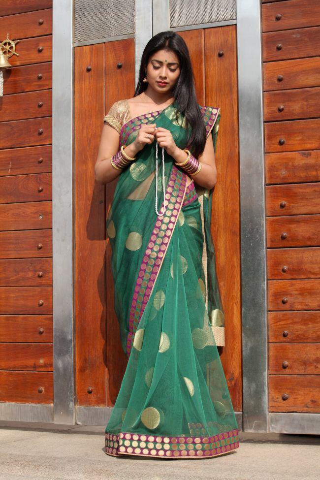 Shriya Saran Cute Look Photo Still In A Transparent Saree In Movie Pavitra