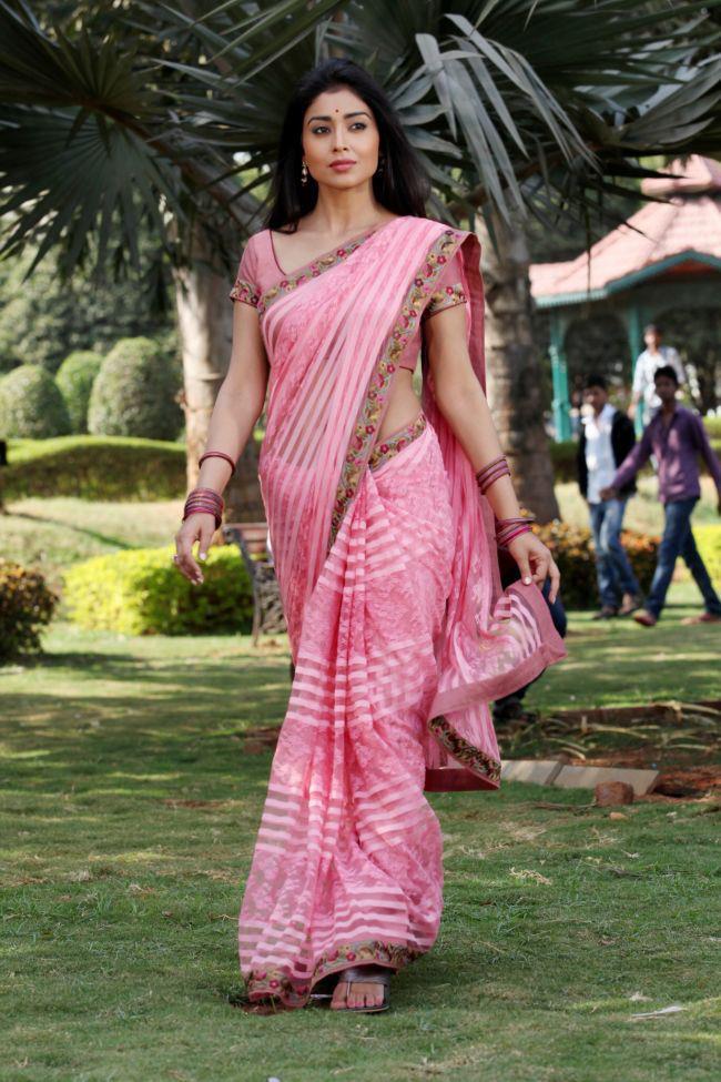 Shriya Saran Sexy Look In Saree Photo Still From Movie Pavitra