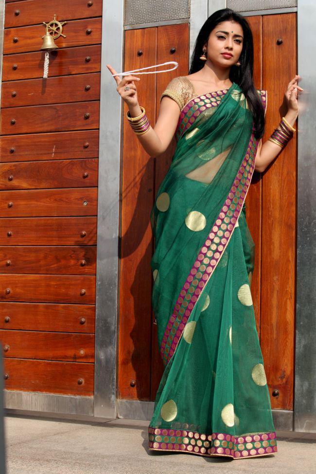 Shriya Saran Stunning Look Still In Saree From Movie Pavitra