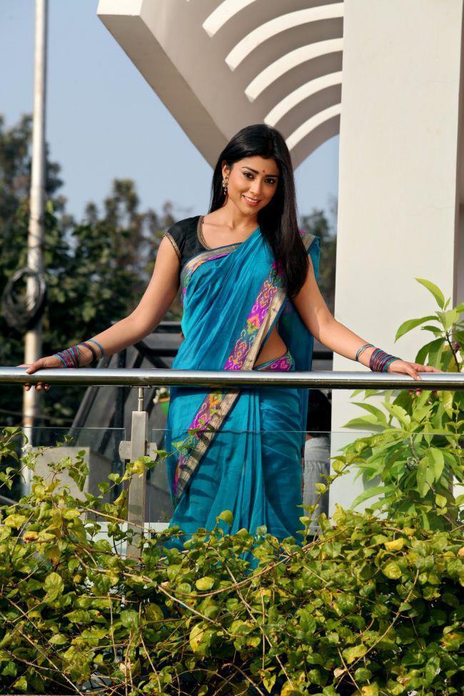 Shriya Smiling Face Look In Saree Photo Still From Movie Pavitra