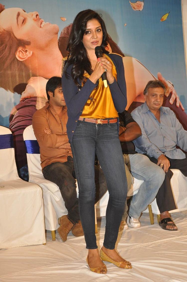 Vimala Raman Speaking Still At Chukkalanti Ammayi Chakkanaina Abbai Press Meet