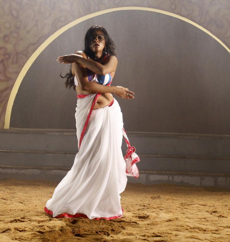 Priyamani In White Saree Sexy Hot Look From Tikka Movie