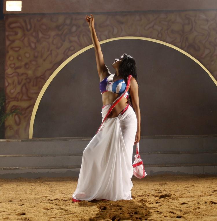 Priyamani In White Saree Sexy Spicy Look From Tikka Movie